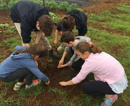 Farm Kids Mini Farmers Program