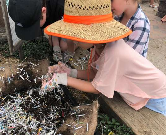 Farm Kids The Fascinating Life of Worms